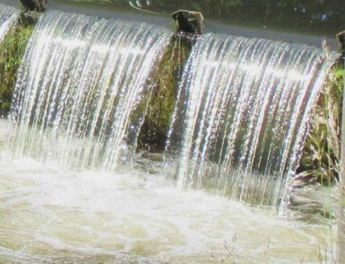 Überfall am Seevewehr in Maschen, einem der maßgeblichen Hindernisse für wandernde Organismen.