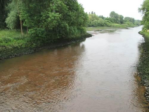 Wir haben den Tideniedrigwasserzeitpunkt der Elbe genutzt und sind an den Deich gefahren: Seevemündung binnendeichs - überbreites, flach über Sandbett rauschendes Wasser. Als Wanderfisch findet man das wohl nicht so toll, als Standfisch gibt es einem das AUS.