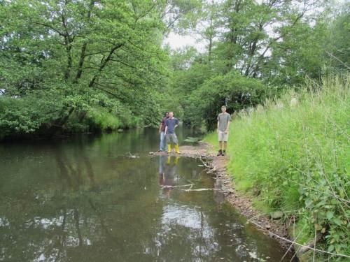 Übertiefe Lage des Fließgewässers - nahezu überall sind Sohlanhebungen erforderlich.