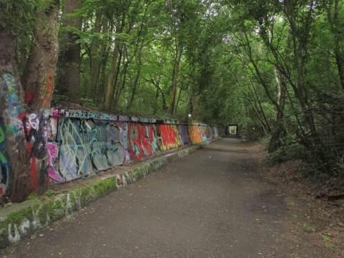 Auf dem Rückweg, Graffiti - gern hätten die Künstler das Beschmieren der Baumstämme lassen können!