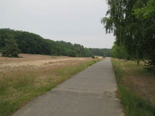 Sand und Heide neben dem Grenzweg - noch schöner wäre das Erlebnis ohne die Hundehaufen ...
