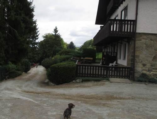 Nach der Ankunft, noch einzugewöhnen - ohne Frauchen, noch am Auto (man beachte Harzer Höhenunterschiede) gehe ich nicht ins Haus.