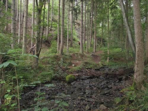 Die Bäche im Wernigeröder Umfeld jedenfalls zeigen, dass es in den Vorwochen wenig geregnet hat.