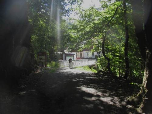 beim Spaziergang an der Bode (hier Start von Treseburg aus), ...