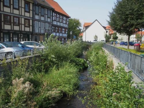 Schöne Ecke, bachab - Beispiel für einen dreidimensional naturnah aussehenden Bach. Bäume dürfen nicht fehlen.