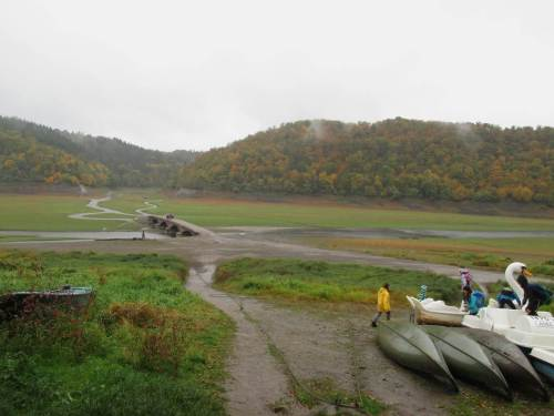 """Trotz des Regens ist an der Aseler Brücke allerhand los. Wanderer und Schulklassen lassen sich von Landschaftsführern die Geschichte dieser nun meist versunkenen Agrarlandschaft vermitteln. Ich darf mit """"meiner Lachs-story"""" sowie Turbulenz hin zum Bach- und Weg-Mäander überraschen."""