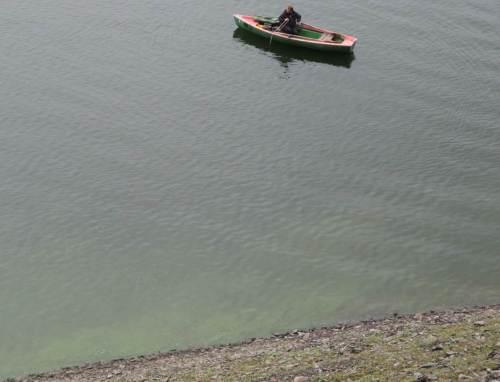 Der Edersee zeigt klares Wasser, am Ufer allerdings ausgeflockte Blaualgenblüte.