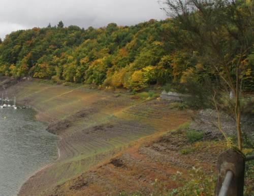 Jetzt auf dem Rückweg geniesse ich die Herbstkulisse des welligen Steilhangs - Farbenspiel aus Wasserabsenken und nachfolgender Pflanzenbesiedlung und -entwicklung.