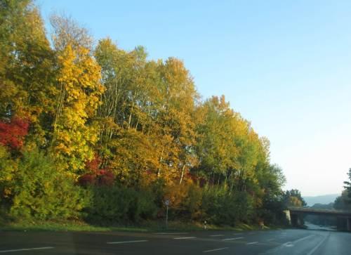 Am Folgetag, Abschied vom Waldeckischen, kurz vor der Autobahn.