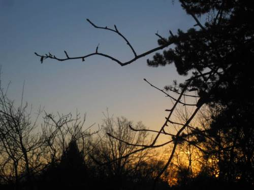 Sonnenaufgang bei klarem Himmel. Der Wetterbericht verspricht einen schönen Tag.