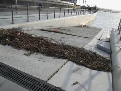"""Strandgut - demnächst kommt mehr. Wir sind in der Sturm- und Sturmflutsaison. Die """"normal"""" 3,60 m Tidehub werden regelhaft deutlich übertroffen."""