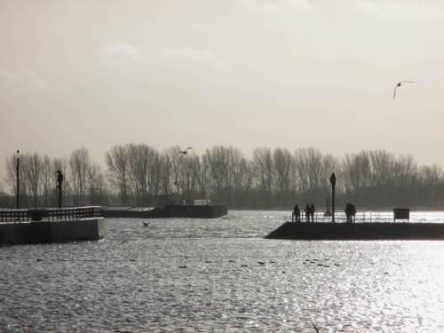 Auf der Elbe zieht ein Binnenschiff vorbei.