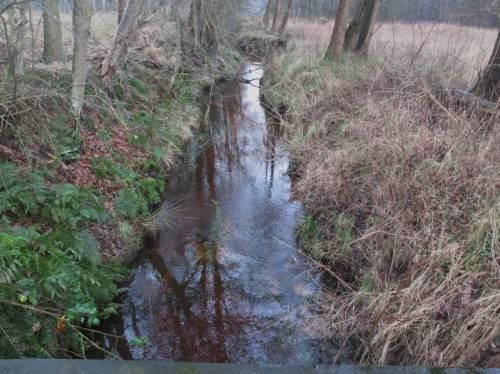 Leider Realität in den meisten unserer Bäche und kleinen Flüsse: Übertief ins Gelände eingeschitten, regelhaft gebaggerte Überbreite, öde Strömungs- und Lebensraumverhältnisse.