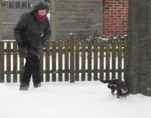 Nachmittags - Schneebö erfasst Frau mit Hund.