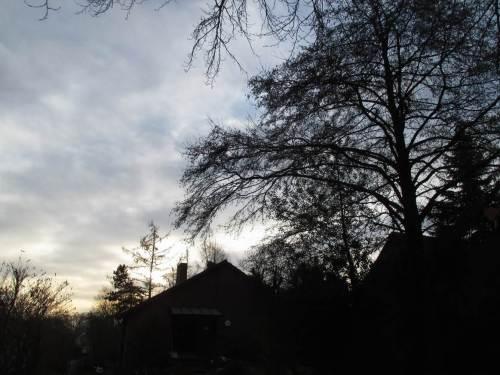 Mitte Januar - es ist wieder frostig geworden, soll weiter in die Minusgrade gehen.
