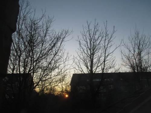 Der Sonnenaufgang vom Arbeitszimmer aus bekräftigt meinen Entschluss - heute geht`s zur Carl Zeiss Vogelstation in die Wedeler Marsch.