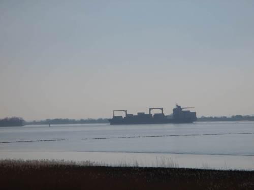 Schnell rübergeguckt und unten weiter geradelt - ah, ja, ein mittlerer, kaum beladener Containerfrachter fährt gen Hamburger Hafen.