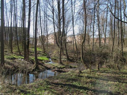 Vom Umfeld her, hier im Schenefelder Stadtgebiet, zeigt die Düpenau gute Voraussetzungen, schnelle flächenhafte Besiedlung zu ermöglichen - nach Restaurieren.