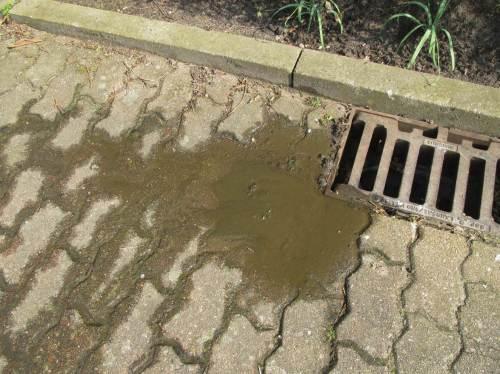 Wie am Zulauf zur öffentlichen Regenkanalisation zu sehen ist, war da nicht nur Wässriges am Ende ...