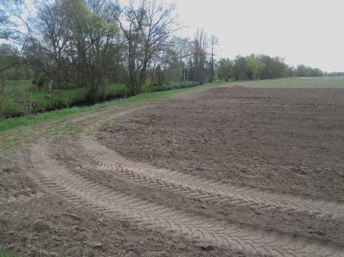 Beeindruckt zeigen sich die Exkursionsteilnehmer regelhaft über die Beispiele deutscher Agrar-Subvention. Besonders, wenn wie hier in einem FFH- und Naturschutzgebiet intensivster Ackerbau bis auf die Gewässeroberkante praktiziert wird.