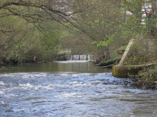 Seeve Maschen: Seeve-Wehr, durch Tiefenerosion entstandener Strömungsabriss am Fischpass, vorn die verschärfte Strömungssituation an der Fußgängerbrücke - leicht aufzufangen durch abwärts anzulegende Rauschen aus Kies/Geröll.