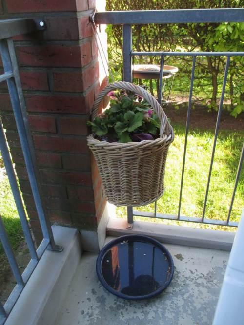 Vogelbad- und Vogeltränke - leicht auch am Balkon anzubieten.