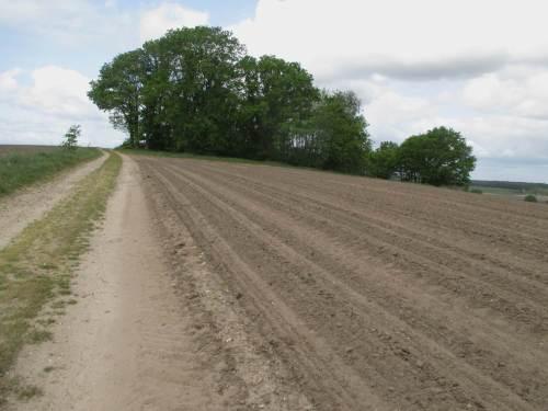 """Fehlsubventionierte Agrarwüste - mal abgesehen von fehlenden Grünstreifen allüberall. Hier liegt der ganze """"Berg"""" in Erwartung des übersubventionierten Mais-Aussäens monatelang bar. Von Bodenschutz keine Spur."""