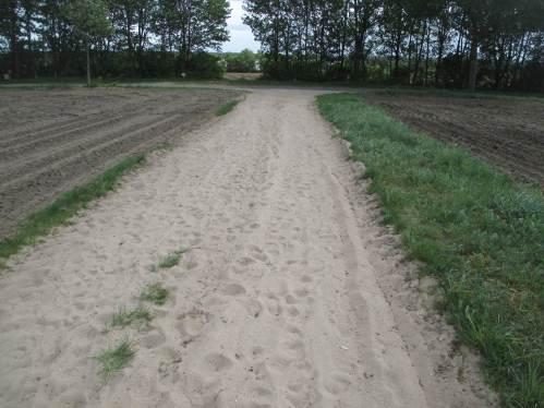 Bodenentmischung - feinster Strandsand auf dem landwirtschaftlichen Weg - talwärts.