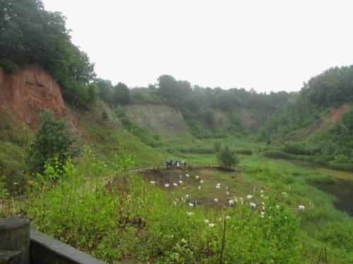 Nachdem wir das Ende der Gewitterfront abgewartet haben, können wir die Grube in Ruhe besuchen.