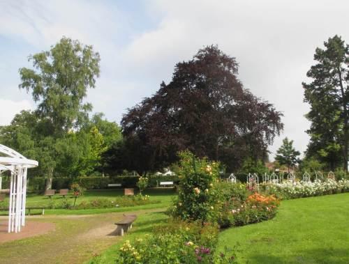Die parkartige Anlage - noch dazu bei diesem Wetter - gefällt uns in ihrer Abwechslung und Rosenvielfalt sehr gut.