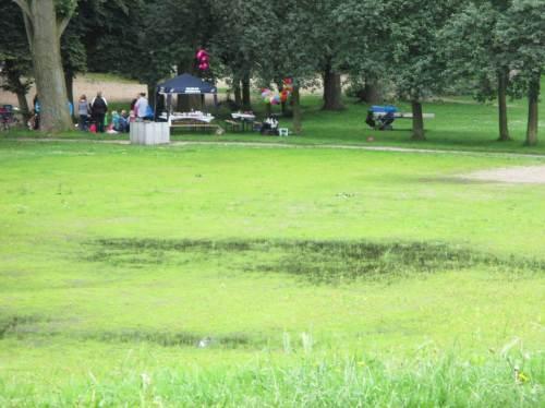 Dränproblem am Fußballplatz - hier ziehen die vorn gezeigten Entwässerungsrinnsale offenbar gar nichts weg. - Im Hintergrund: Anregung für Freiluft-Geburtstagsfeier.
