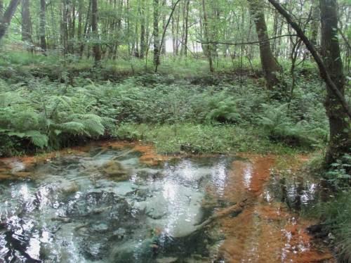 Es ist erstaunlich, was die Umsetzung sauerstofffreien, glasklaren Grundwassers beim Kontakt mit Sauerstoff und Umsetzung der gelösten Stoffe für Farben erzielt.