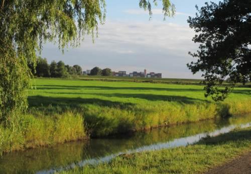 Gutes Wetter, mal wieder gen Fährmannssand an die Elbe ... - was bewegt sich da hinterm Deich?
