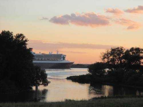 Noch einmal sehe ich die Queen Mary 2 - zwischen Auwaldresten (bitte mehr für die Auwälder tun!) den Auslauf der Wedeler Au vor deren Sperrwerk passierend.
