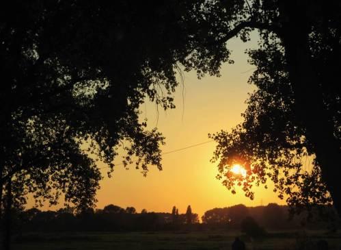 """Abendsonne über der Wedeler Marsch - dann man """"Gute Nacht""""."""