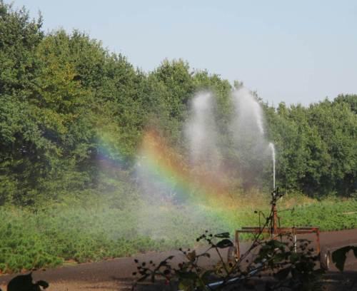 Was für ein schöner Regenbogen! ? ? ?