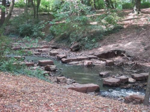 Steinreiches Ufer und gutes Gefälle lassen Eigendynamik innerhalb des Bauwerks erkennen.