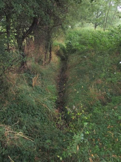 Ilserheide und anderswo - sommertrockene Bäche, Zeichen von Übernutzung des Wasserhaushalts und Verschärfung der Auswirkungen durch Klimawandel. - Umdenken tut Not.