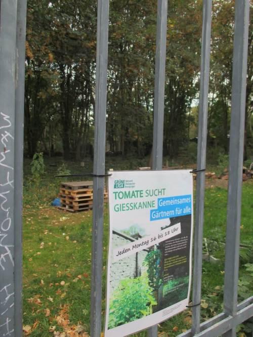 Zwischendrin gute Beispiele für städtische Umweltbildung für die junge Generation.