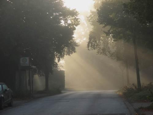Morgennebel - nichts Ungewöhnliches Anfang Oktober.