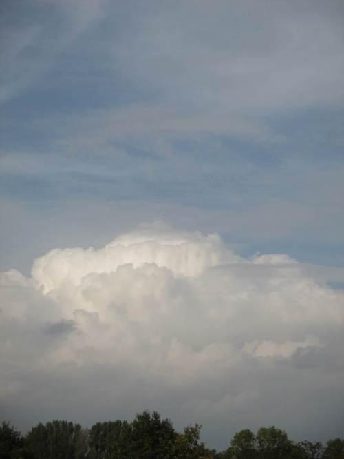 Erinnerung an blauen Himmel - nachts soll es regnen (angesichts anhaltender Trockenheit ohne größere Niederschläge seit April brauchen wir das Wasser !).