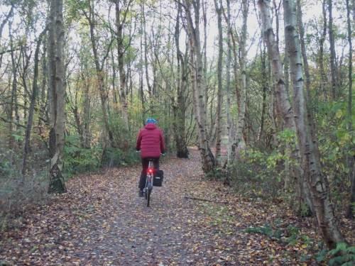 Für den Start der Tour haben wir uns ein kleines Waldstück ausgesucht - ja, gelegentlich gibt es im waldärmsten Bundesland S-H, gar auf der Halbinsel Eiderstedt, auch Wald.
