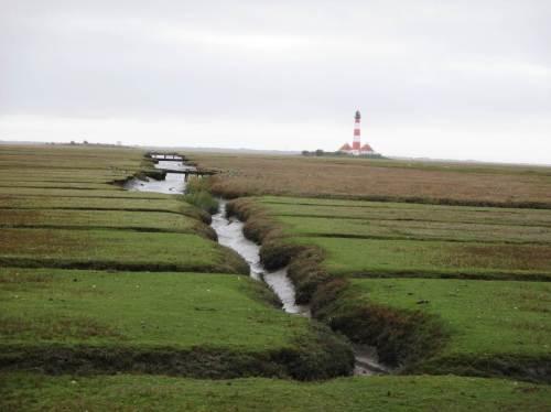 Da man den Leuchtturm nur bei 1stündigen Führungen betreten kann, machen wir uns auf den Rückweg. Die Marsch- und Wattlandschaft sehen wir nächstes Frühjahr wieder.