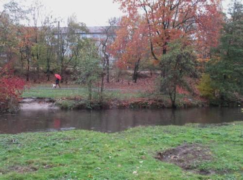 Am anderen Ufer ein Erosionshang, Zeichen hohen Besucher- und Nutzungsdrucks.