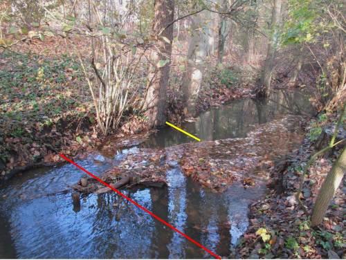 Auch hier zeigt sich, wie das früher überbreit kaputt gebaggerte Niedrigwasserprofil von den Restaurierungen mit Stein und Holz profitiert. Turbulente Strömung kennzeichnet das nun belebte Niedrigwasserprofil.