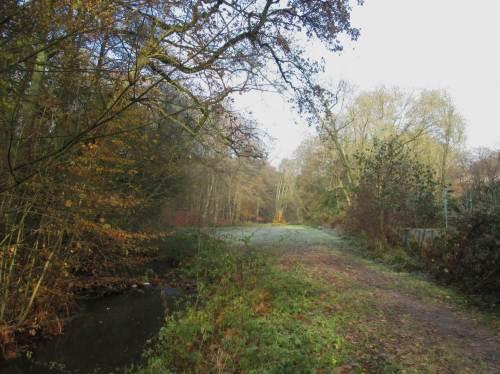 Angekommen, Blick bachaufwärts - hier wird im Frühjahr 2017 eine größere Baumaßnahme mit Bagger das Bachumfeld verbessern, auch Hochwasserrückhalt schaffen.