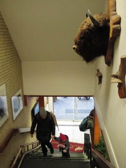 An der Treppe zum Restaurant hängt oben ein Wisentkopf.