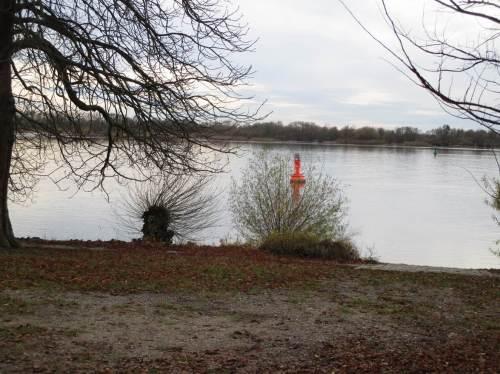 Rote Fahrwassertonne - oha! dicht vor Land. Fast fürchtet man angesichts des seeschifftiefen Wassers, dass der Elbhang gelegentlich in die Fahrrinne abrutscht.