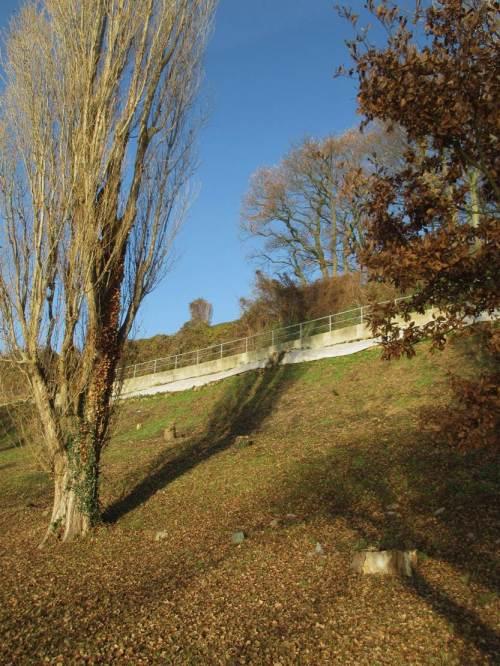 """Elbhang Rissen - menschlicher Gärtnerwahn entfernt mit allen Bäumen nach Verrotten der Wurzeln den """"kostenlosen"""" natürlichen Erosionsschutz. - Dauerhafte Geldverschwendung gegen Hangerosion ist die Folge."""