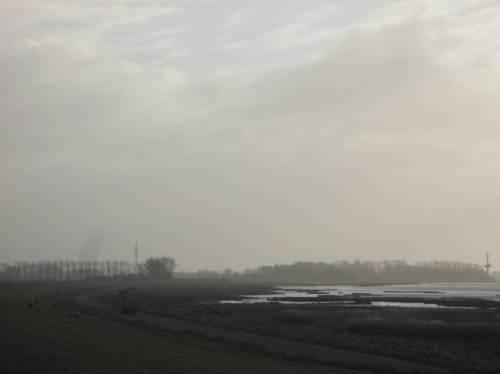 Auf dem Deich angekommen. Die Elbe ist während der Ebbe nur zur Hälfte abgeflossen, reichlich Wasser auf dem Süßwasserwatt.
